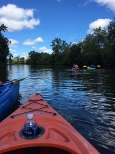 View From Kayak On Grand River